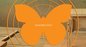 butterfly effect schools