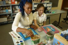 Girls with learning difficulties developing social skills