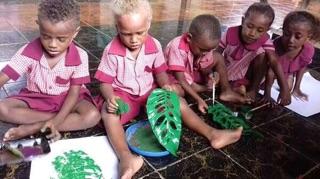 Solomon Islands Project
